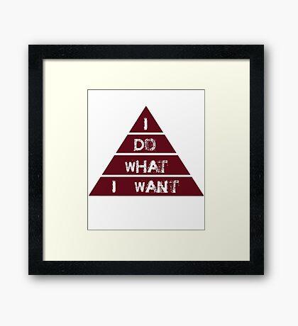 I Do What I Want, Sarcastic, Funny Joke, Humorous Framed Print