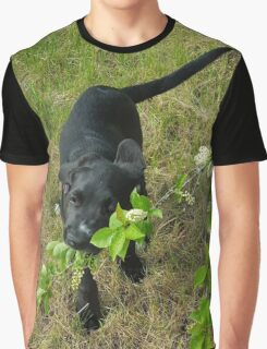 Dolly Graphic T-Shirt