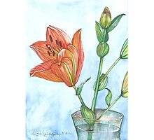 Lilly Bouquet  Photographic Print