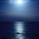 Blue Moon over Bramble Bay by Silken Photography