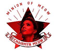 Minion of Meow Snow Photographic Print