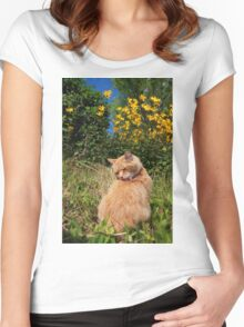 Ginger cat licking back in garden Women's Fitted Scoop T-Shirt