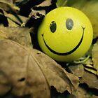 Smile always by MallsD