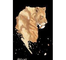 SaberTooth Tiger Photographic Print