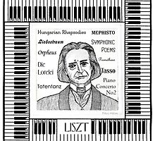 Liszt by Paul Helm