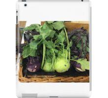 winter colour iPad Case/Skin