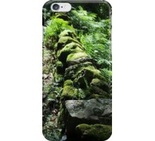 On The Damp Side iPhone Case/Skin