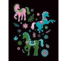 ponies 1 Photographic Print