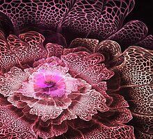 Pink Fractal Flower by MartinCapek