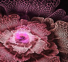 Pink Fractal Flower by MartinCapek