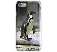Penguin 7 iPhone Case/Skin