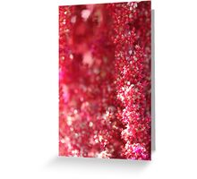 Tiny pink flowers - 2016 Greeting Card