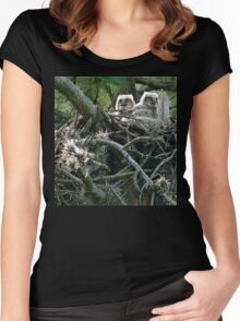 Great Horned Owl Chicks Women's Fitted Scoop T-Shirt