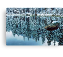 Snow Mirror Canvas Print