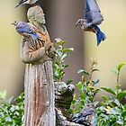 St. Francis and the Bluebirds by Bonnie T.  Barry
