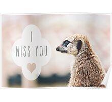 Miss You Meerkat Poster