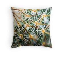 Mexican Round Cactus Throw Pillow