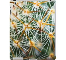 Mexican Round Cactus iPad Case/Skin