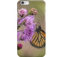 Foggy Morning Monarch iPhone Case/Skin