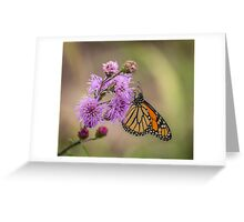 Foggy Morning Monarch Greeting Card