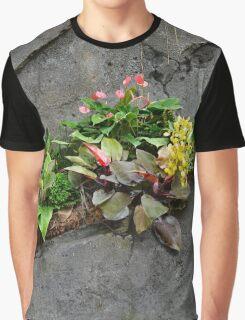 Succulent Garden Graphic T-Shirt