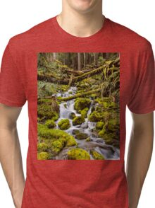 Mt. Rainier Stream Tri-blend T-Shirt