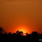 Cloudless Sunset-Mobile,Alabama by zpawpaw