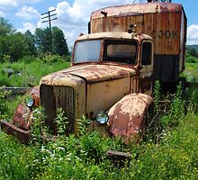 Rusting Away by John Schneider
