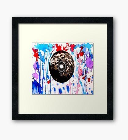Red White and Blue Bird  Framed Print