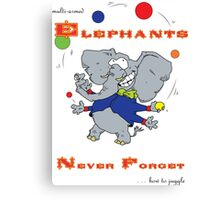 Multi-armed Elephants Never Forget ... how to Juggle Canvas Print