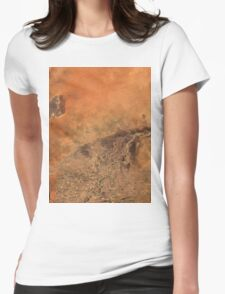 Timbuktu Niger River Mali Satellite Image Womens Fitted T-Shirt