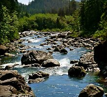 River Through Giant Stones by dmacneil