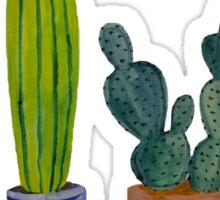 Cacti don't succ  Sticker