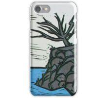 Precipice iPhone Case/Skin