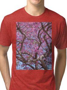 Pink Spring Blossoms Tri-blend T-Shirt