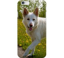 Playful Pup iPhone Case/Skin