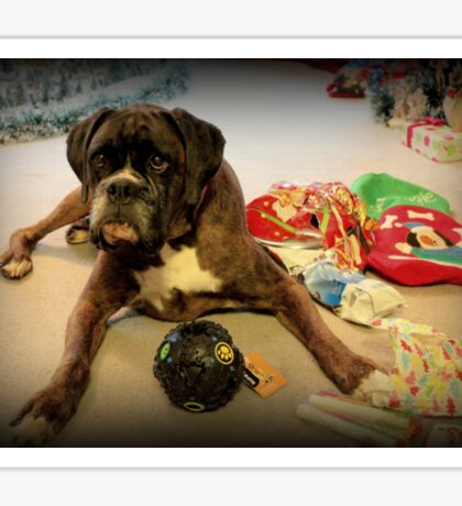 Is That Another Christmas Present For Me ?  - Boxer Dogs Series Sticker
