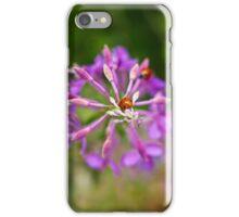 Love Bugs iPhone Case/Skin