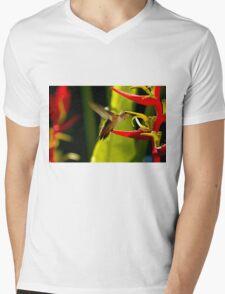 Hummingbird Feeding On Heliconia Mens V-Neck T-Shirt