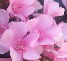 Mother's Day by carol selchert