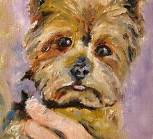 Baxter, Baron of Brandon Hall by Susan E Jones