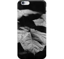 Summer Leaves iPhone Case/Skin