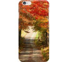 Autumn Path to Winter iPhone Case/Skin