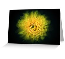 Abstract flower background Greeting Card