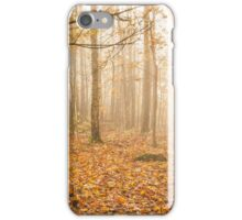 Foggy morning autumn forest iPhone Case/Skin