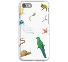 Phylogenetic Tree of Animals iPhone Case/Skin