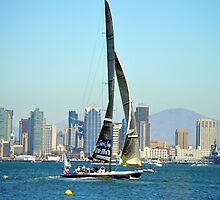 Stars and Stripes ~ America's Cup ~ San Diego by Marie Sharp