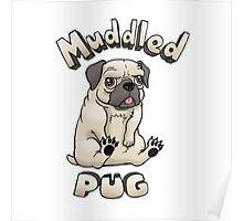 Muddled Pug Poster