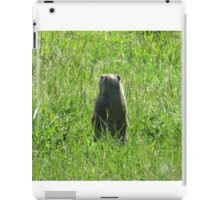 Better look behind you!! iPad Case/Skin