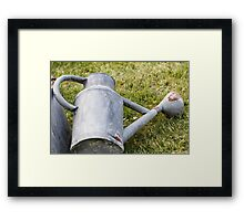 watering the lawn Framed Print
